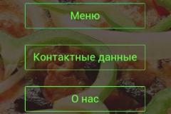 Разработка мобильного приложения