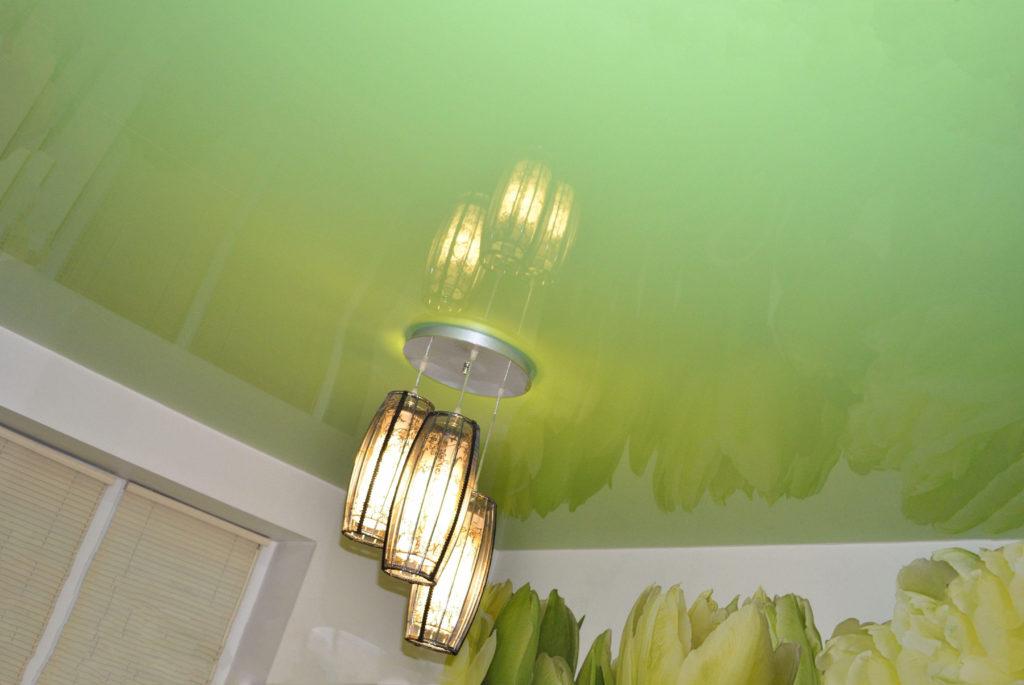 выбрать экологический потолок