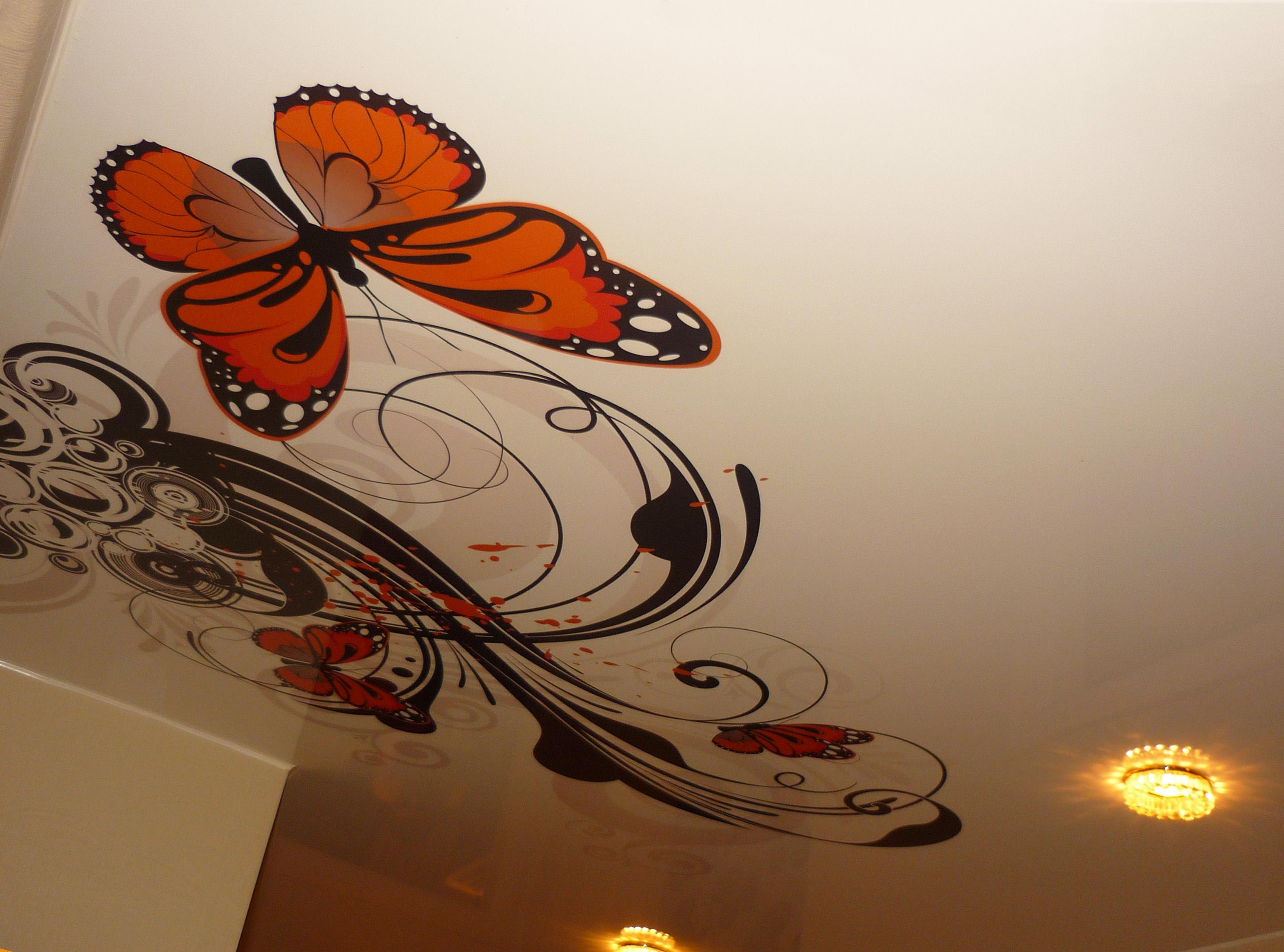 Бабочка на глянцевом потолке