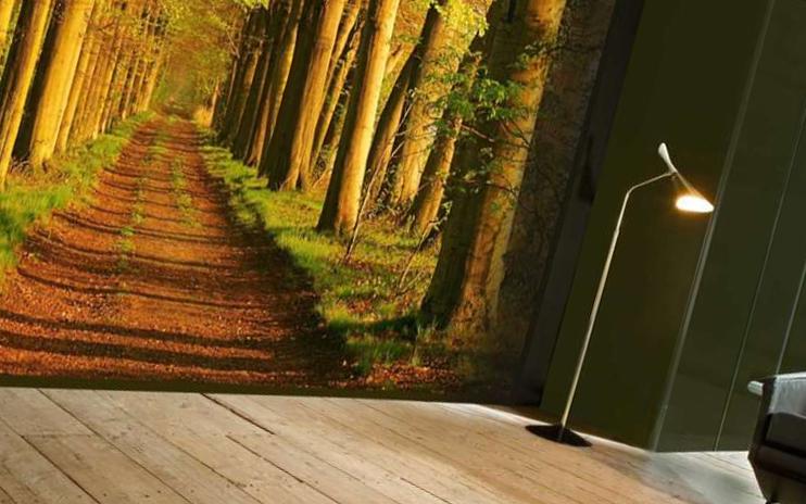 Натяжные стены с фотопечатью – новинка в сфере декора
